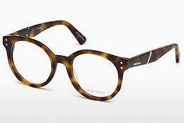 Designer briller Diesel DL5264 053 - Havanna, Yellow, Blond, Brown