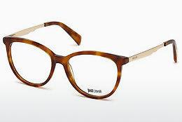 Designer briller Just Cavalli JC0814 053 - Havanna, Yellow, Blond, Brown
