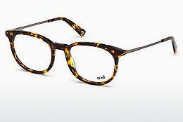 Designer briller Web Eyewear WE5246 053 - Havanna, Yellow, Blond, Brown