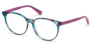 Web Eyewear WE5291 055