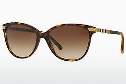 Solbriller Burberry BE4216 300213 - Brun, Havanna