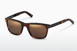 Solbriller Rocco by Rodenstock RR322 H