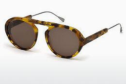 Solbriller Tod's TO0231 53J - Havanna, Yellow, Blond, Brown