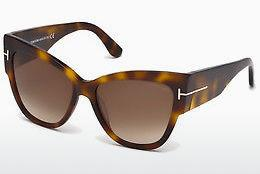 Solbriller Tom Ford Anoushka (FT0371 53F)