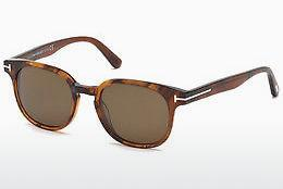 Solbriller Tom Ford Frank (FT0399 48B)