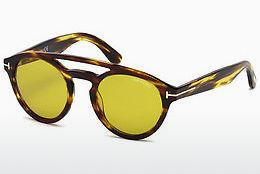Solbriller Tom Ford Clint (FT0537 48E)