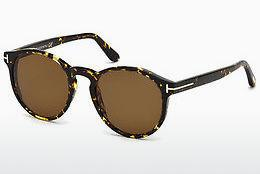 Solbriller Tom Ford FT0591 52M - Brun, Dark, Havana