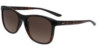 Nike NIKE PASSAGE EV1199 237 TORTOISE/BROWN GRADIENT