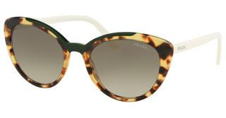 Prada PR 02VS 3215O2 GREEN GRADIENTMEDIUM HAVANA/GREEN
