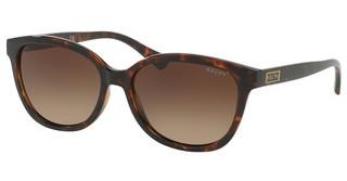 Ralph RA5222 137813 GRADIENT BROWNSHINY DARK HAVANA