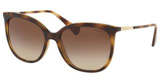 Ralph RA5248 500313 GRADIENT BROWNSHINY DARK HAVANA