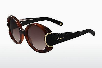 Solbriller Salvatore Ferragamo SF811SL SIGNATURE 233 - Havanna, Sort