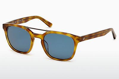 Solbriller Web Eyewear WE0156 53V - Havanna, Yellow, Blond, Brown