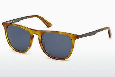 Solbriller Web Eyewear WE0160 53V - Havanna, Yellow, Blond, Brown