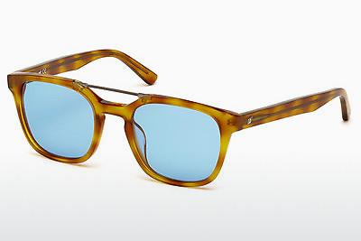 Solbriller Web Eyewear WE0166 A53 - Havanna, Yellow, Blond, Brown