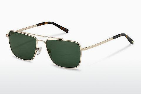Solbriller Rocco by Rodenstock RR104 B